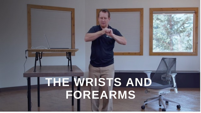 Office 11 - Wrists and Forearms