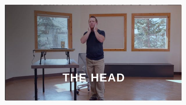 Office 3 - The Head