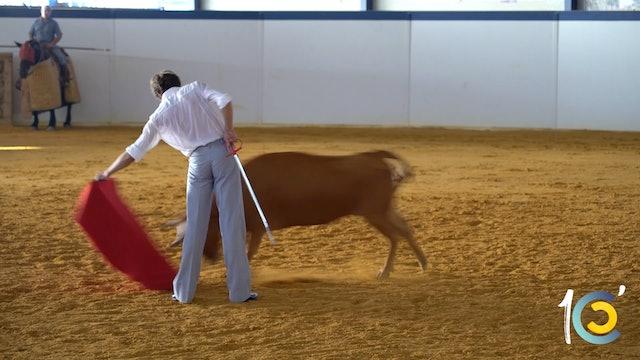 Episodio 15: Castella se encierra con seis vacas antes de Nimes.
