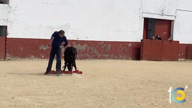 Episodio 39: La torería de Román.