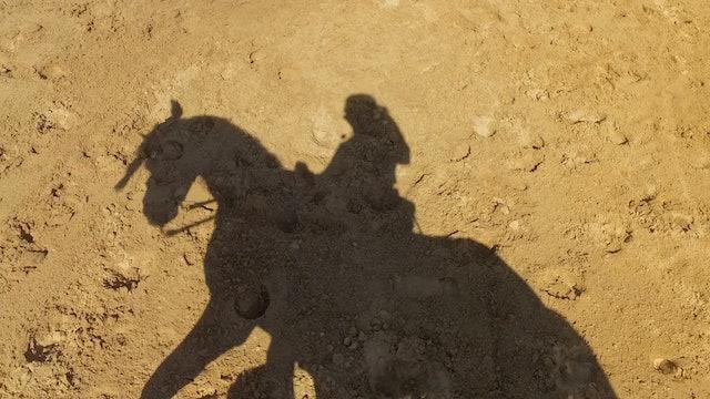 Episodio 2: Lea y su pasión por los caballos