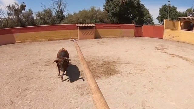 Episodio 8: Castella continúa su entrenamiento en Beziers tentando toros