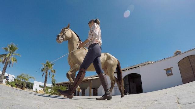 Episodio 1: Así viven Lea Vicens y sus caballos
