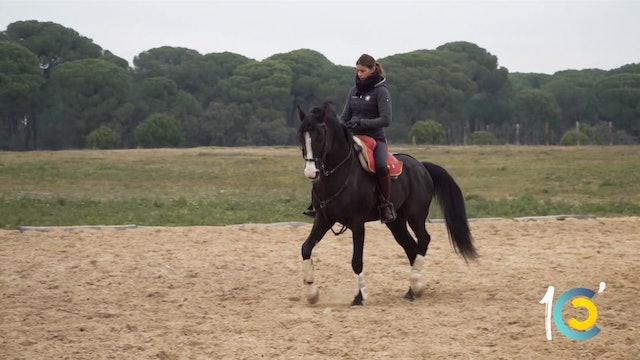 Episodio 36: Lea prepara a sus caballos para el tentadero.