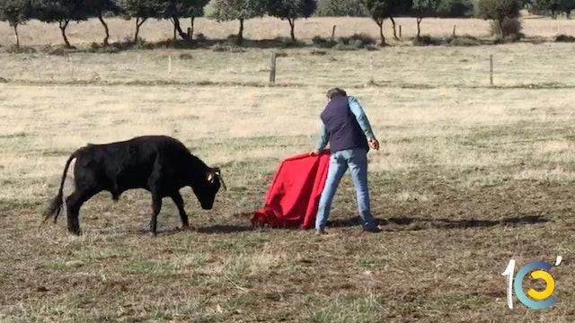 Episodio 22: Perera en un tentadero de machos torea con 'El Niño de la Capea'