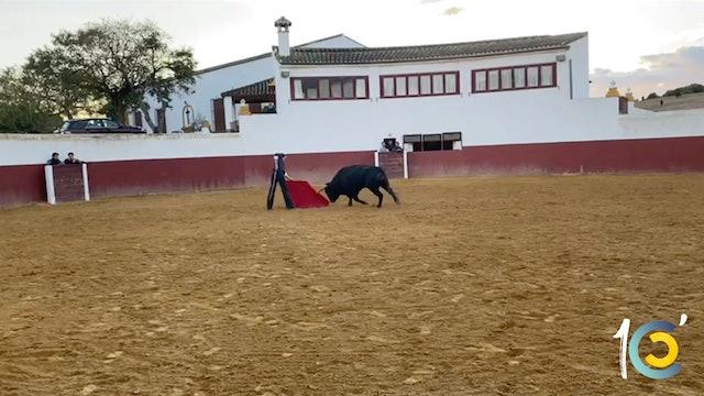 Episodio 43: Román en la exigente ganadería de Fuente Ymbro.