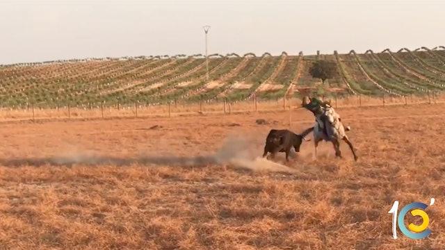 Episodio 10: Perera, del triunfo en Huelva al rejoneo.