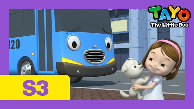 Tayo the Little Bus S3 EP19 - I want a puppy