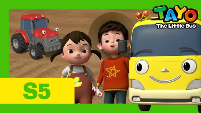 Tayo the Little Bus  S5 EP8 - Kinder'...