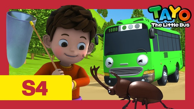 Tayo the Little Bus S4 EP1 - Duri's Homework