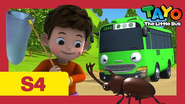 Tayo the Little Bus S4 EP1 - Duri's H...
