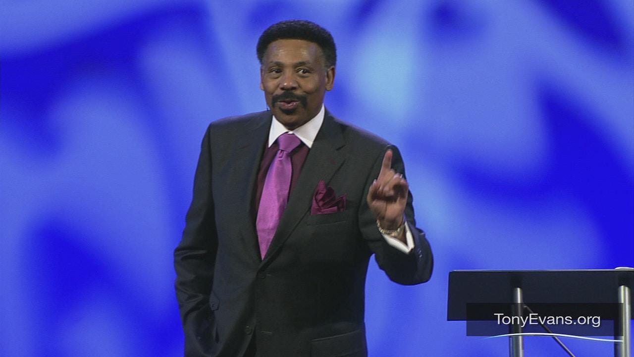 Watch Kingdom Stewardship