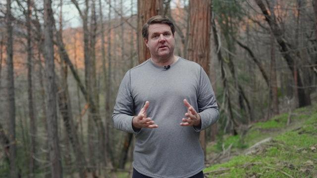 Amazing Sequoias: God's Living Giants Part 1