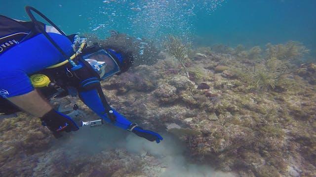 Exploring God's Ocean Part 2