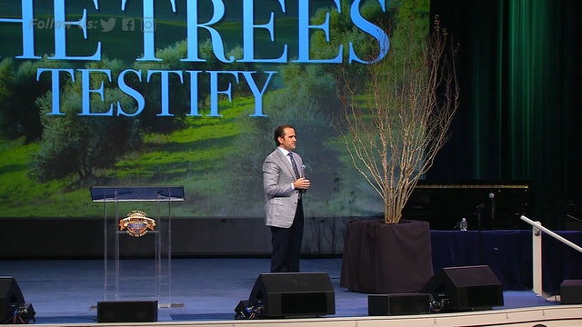 The Tree of Sovereignty