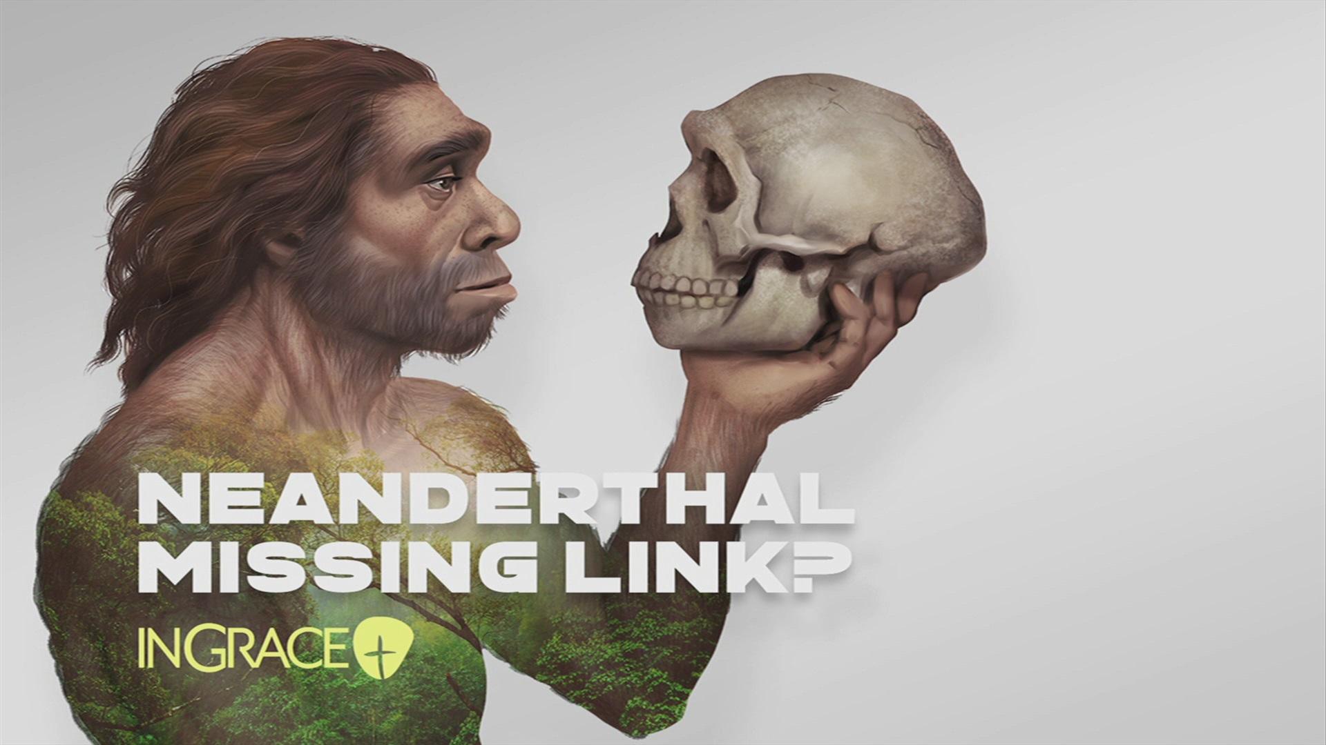 Neanderthal – Missing Link?