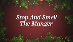 Video Image Thumbnail:Stop And Smell The Manger