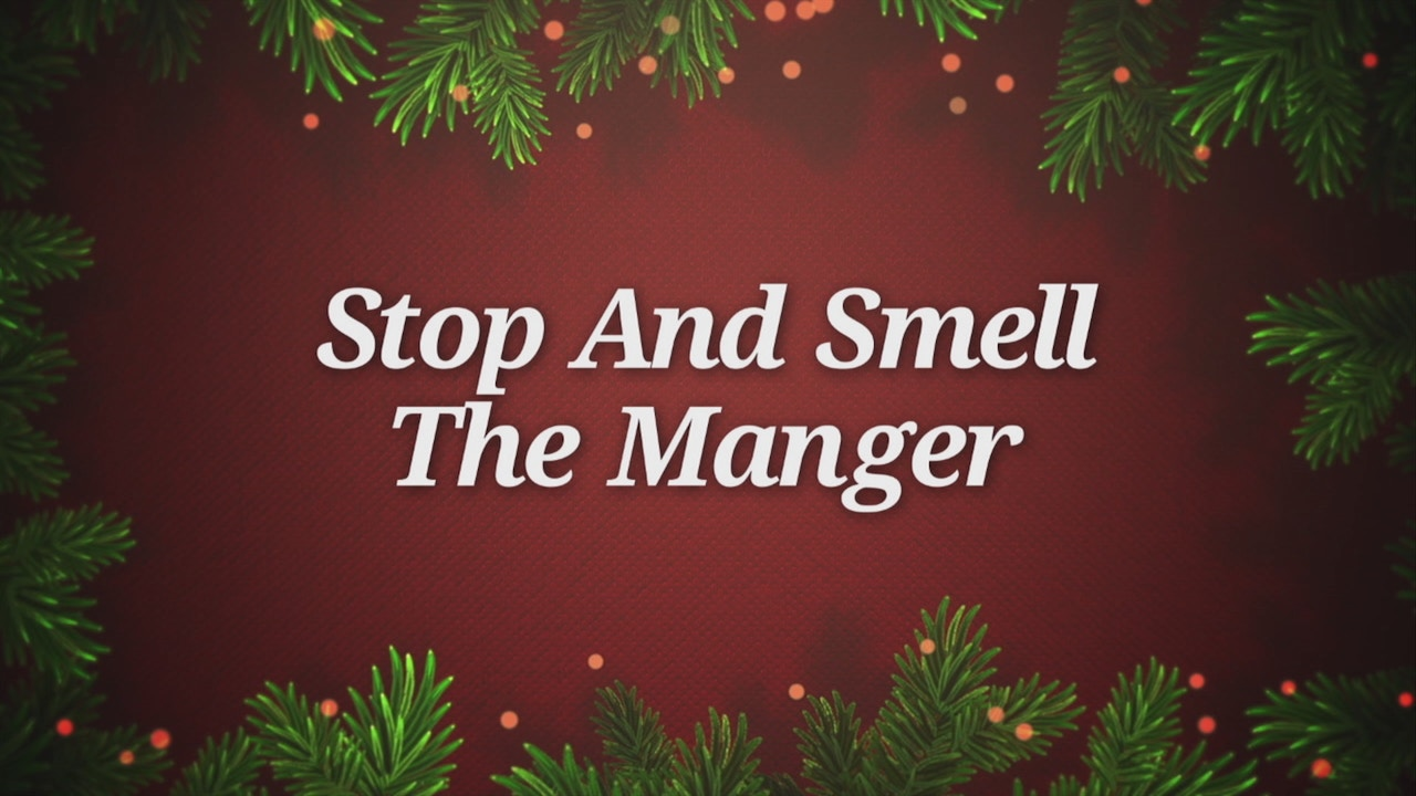 Watch Stop And Smell The Manger