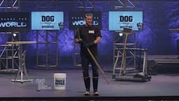 Video Image Thumbnail:Puppies, Potpourri & Poop