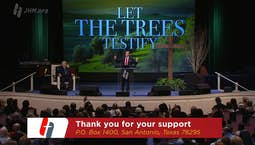 Video Image Thumbnail:Tree of Triumph