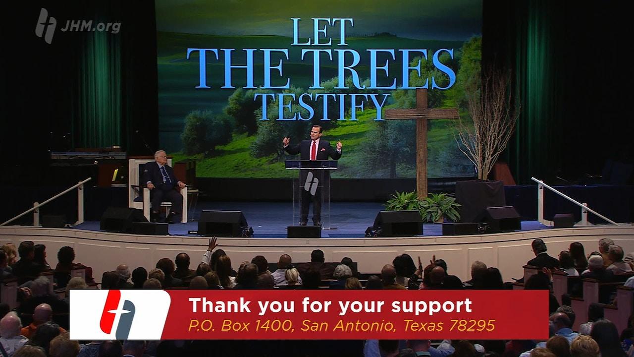 Watch Tree of Triumph
