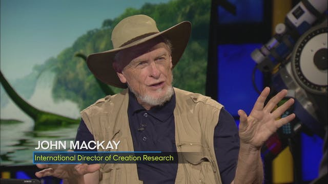 John MacKay | Dinosaurs Down Under