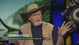 Video Image Thumbnail:John MacKay | Dinosaurs Down Under