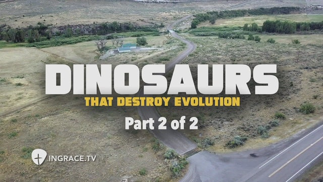 Dinosaurs that Destroy Evolution Part 2