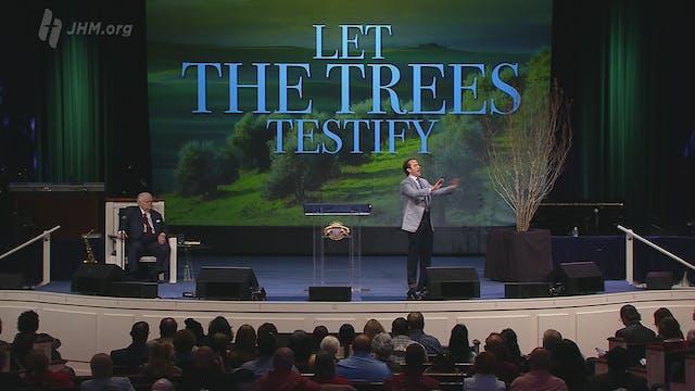Tree of Sovereignty