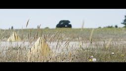 Video Image Thumbnail:The Kingdom of God Part 2