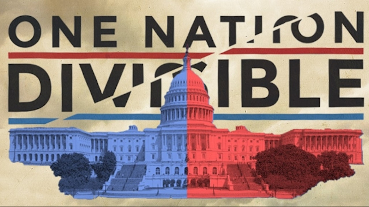 One Nation Divisible