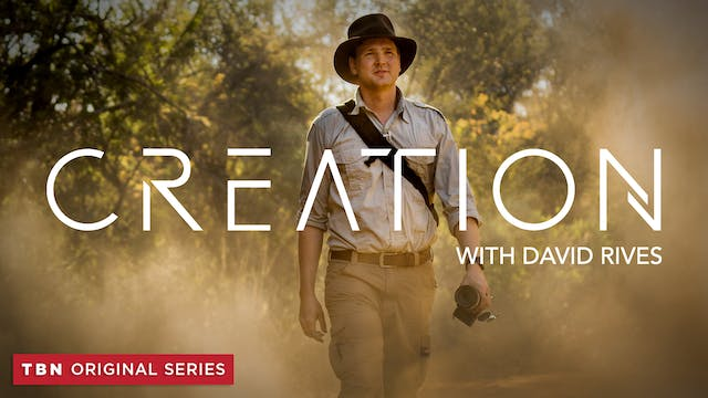 CREATION with David Rives