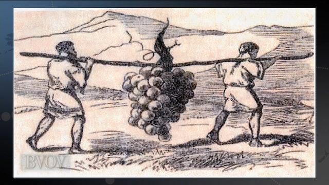 How To Reap An Abundant Harvest
