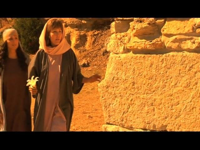 The Book Of Ruth Journey Of Faith