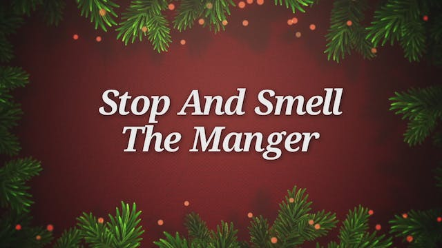 Stop And Smell The Manger