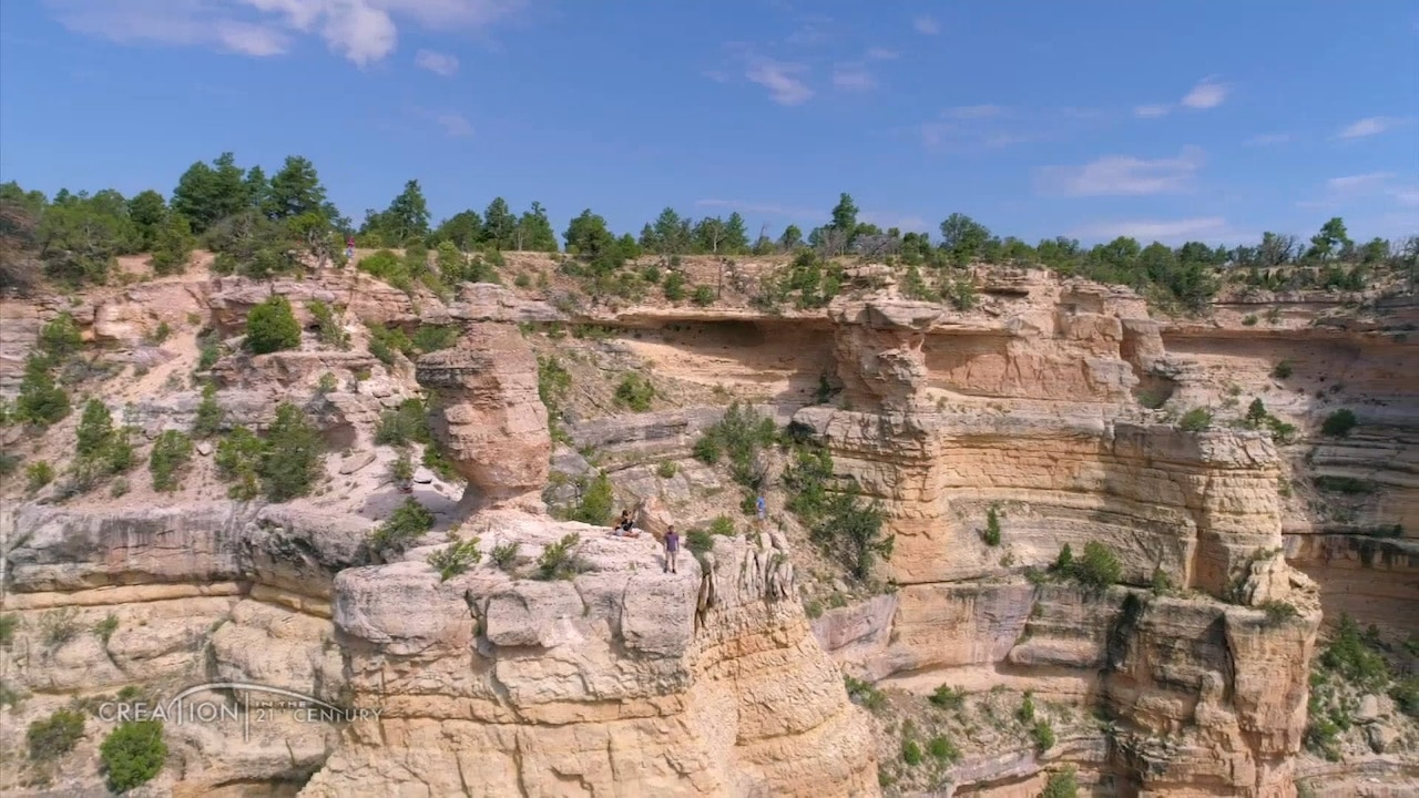 Watch Dr. Andrew Snelling | The Grand Canyon