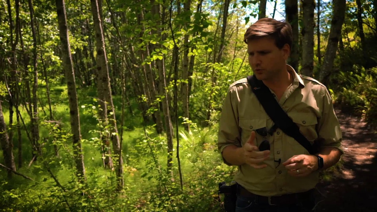 Watch Mike Riddle   Dating Earth's Rocks & Fossils