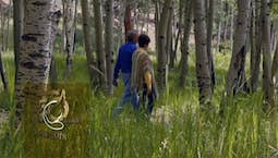 Video Image Thumbnail:How to Find, Follow and Fulfill God's Will | Tuesday