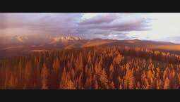 Video Image Thumbnail:Amazing Sequoias: God's Living Giants Part 2