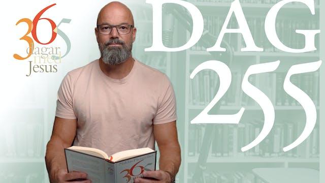 Dag 255: Jairos | 365 dagar med Jesus