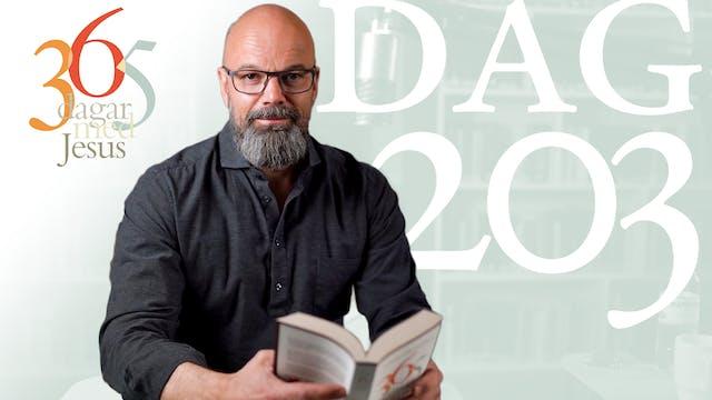 Dag 203: Mer om seendet | 365 dagar m...