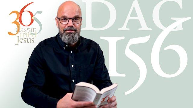 Dag 156: I hemmet | 365 dagar med Jesus