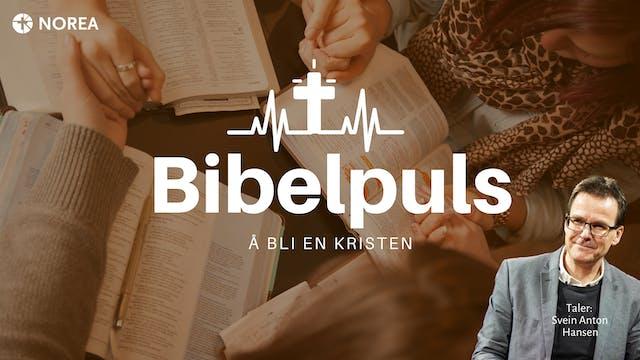 Norea | Bibelpuls 11 | Å bli en kristen