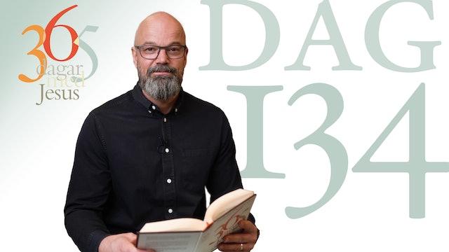 Dag 134: Det skulle inte skada | 365 dagar med Jesus