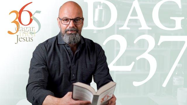 Dag 237: Bekymmer | 365 dagar med Jesus