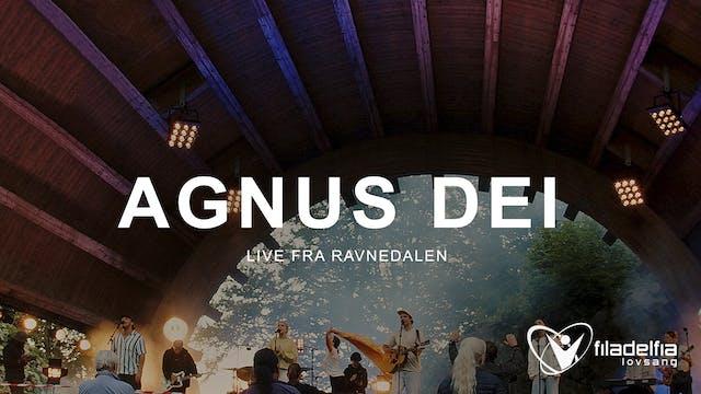 AGNUS DEI - Ravnedalen 2021