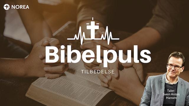Bibelpuls 3 | Maria budskapsdag