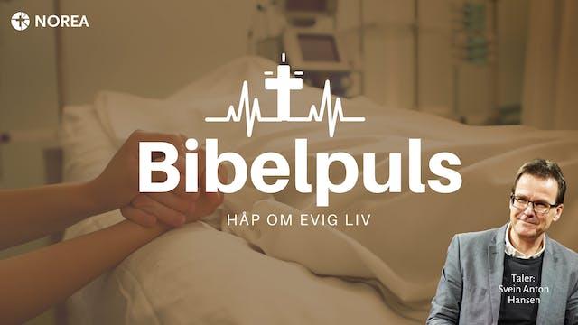 Norea | Bibelpuls 22 |  Håp om evig liv