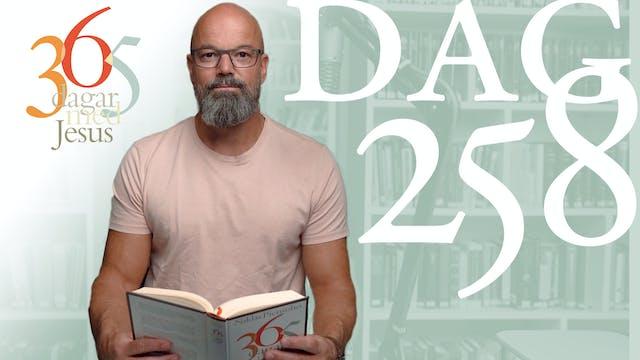 Dag 258: Ren och oren | 365 dagar med...
