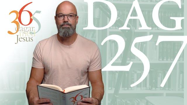 Dag 257: Testa Jesus | 365 dagar med ...